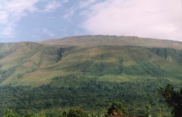 Mountain Cameroon in Buea - e-Fako