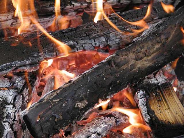 Burning Piece Of Wood