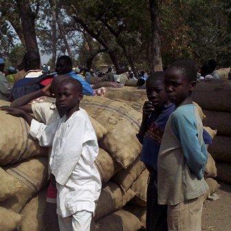 Children in north of cameroon
