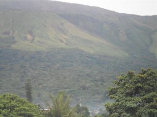 Mount Cameroon by Maria Betow
