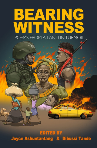 Bearing-Witness Cover