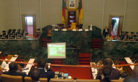 National_assembly_cameroon_2